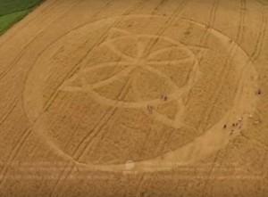 O impressionante agroglifo surgido em Ipuaçu no último 31 de outubro